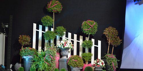 location-plante