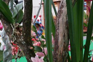 un week-end fleuri  au salon de l habitat d Orléans